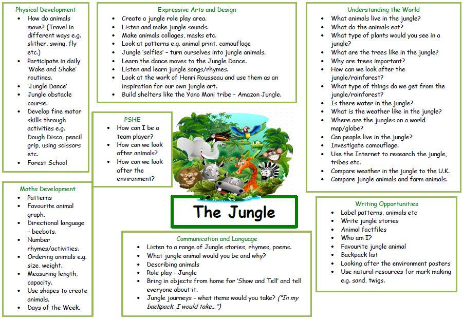 EYFS jungle summer topic overview