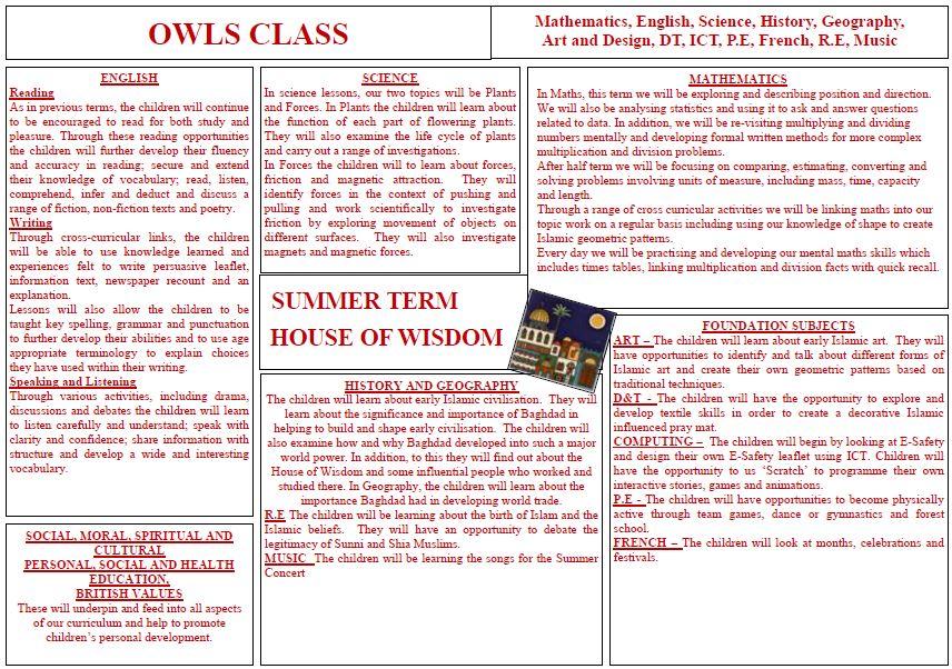 Owl's Summer Curriculum Overview