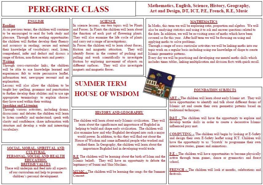 Peregrine's Summer Curriculum Overview