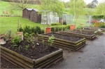 20. The veg beds